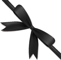 Black Bow Ribbon Icon2 Vector Data