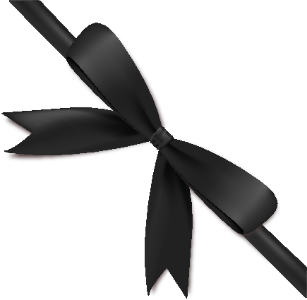 Black Bow Ribbon Icon2 Vector Data | SVG(VECTOR):Public ...