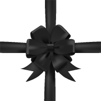 Black Bow Ribbon Icon3 Vector Data