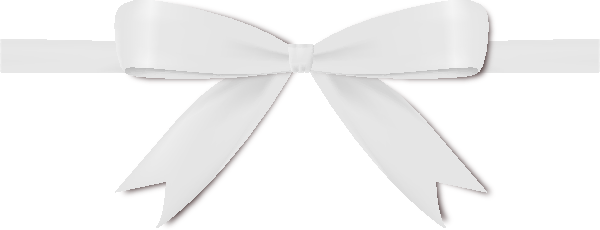 White Ribbon Bow Vector