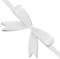 White Bow Ribbon Icon2 Vector Data