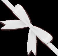 White Bow Ribbon Icon2 Vector Data