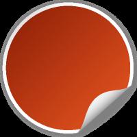 Circle seal ORANGE