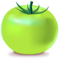 GREEN TOMATO Icon(Vegetable)